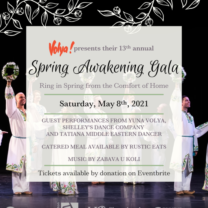 13th Annual Spring Awakening Gala